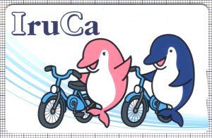 サイクルIruCa(表)