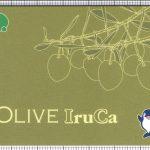 OLIVE IruCa(表)