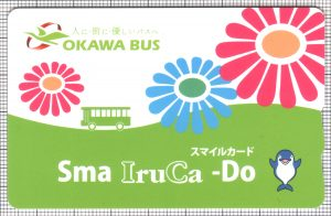 Sma IruCa-Do(表)